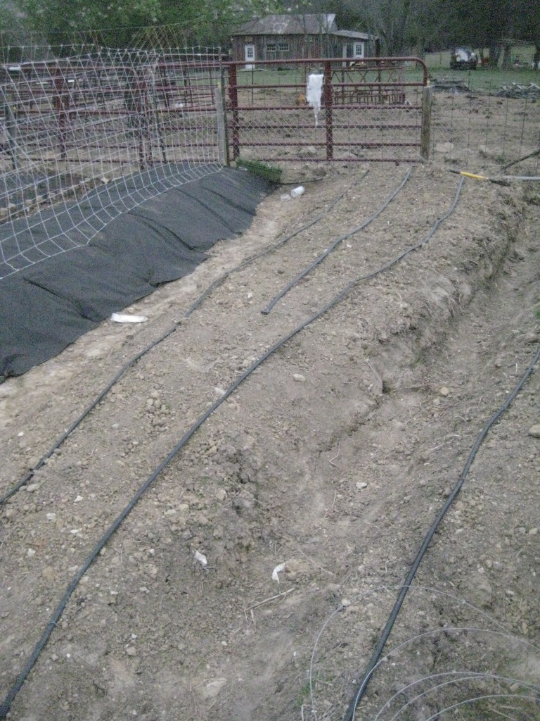 Mounds with Irrigation lines